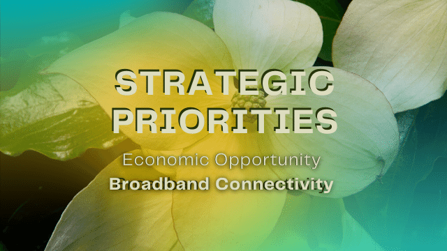 Strategic Priorities of Broadband Connectivity for Economic Development